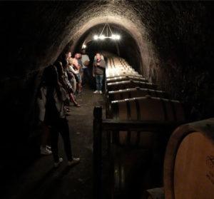 Crianza de los vinos
